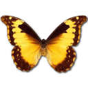 Morpho Diana Sticker