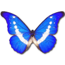 Morpho Helena Sticker