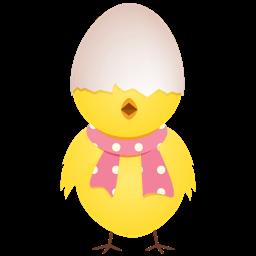 Chicken Egg Shell Top Sticker