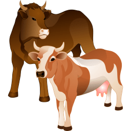 Cattle Sticker