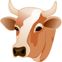 Cow Head Sticker