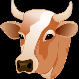 Cow Head Sticker