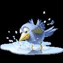 Pool Bird Sticker