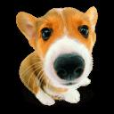 Puppy 10 Sticker