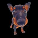 Puppy 8 Sticker