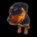 Puppy 9 Sticker