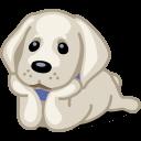 Dog Labrador Sticker