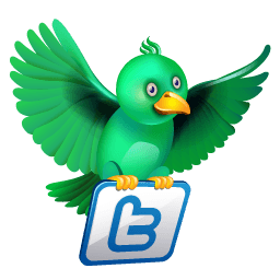 Twitter Flying Green Sticker