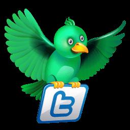 Twitter Flying Green Sticker