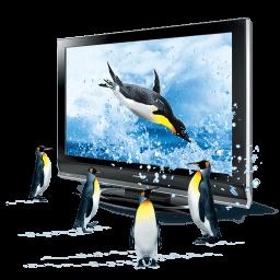 3d Penguins Sticker