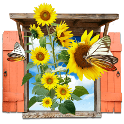 Flowers Sunflowers Window Sticker