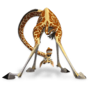 Madagascar Melman Sticker