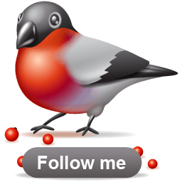 X-mas Bullfinch Follow Sticker