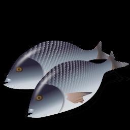 Fish Dorada Sticker