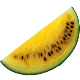 Yellow Watermelon Sticker