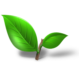 Tea Plant Leaf Sticker