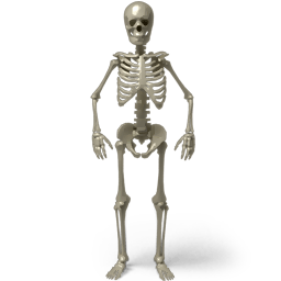 Standing Skeleton Sticker