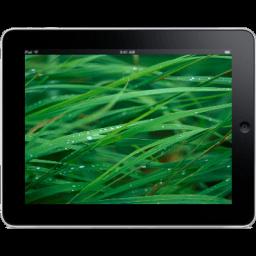 Ipad Landscape Grass Background Sticker