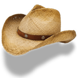 Hat Cowboy Straw Sticker