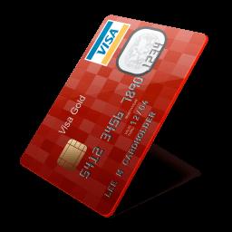 Visa Sticker