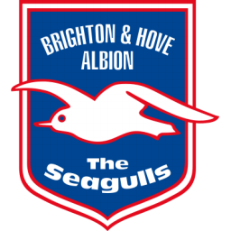 Brighton Hove Albion Sticker