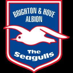 Brighton Hove Albion Sticker