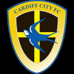 Cardiff City Sticker