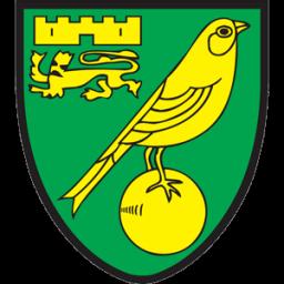 Norwich City Sticker