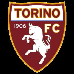Torino Sticker