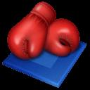 Boxing Sticker